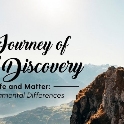 Life and Matter: Fundamental Differences
